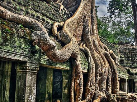ta-phrom-temple-01